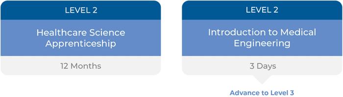 Career Pathway - Level 2 Timeline